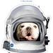 Blue II Astronaut Mask
