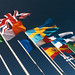 Tessuto bandiere (Flag)