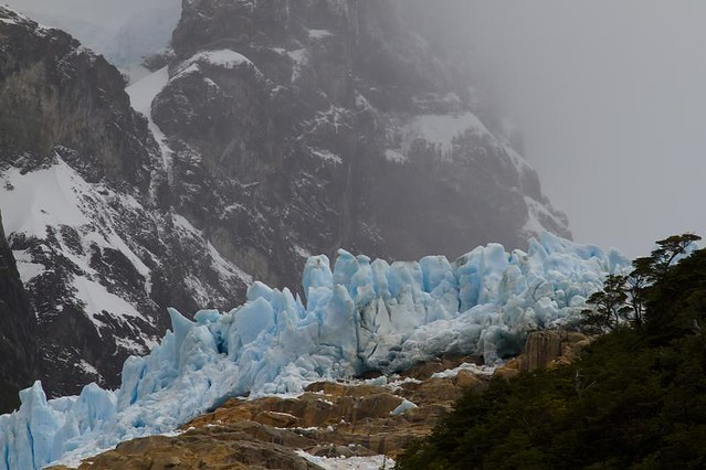 Balmaceda Glacier (DI02243) Photo by Carlye Calvin