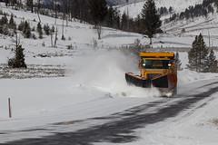 winter, vehicle, transport, snow, snow removal, snowplow, winter storm, blizzard,