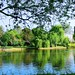 Regents park London by Syed Ali Warda