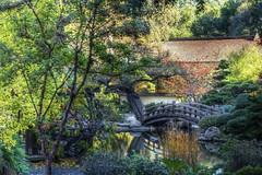 Hakone Japanese Garden