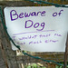 beware-dog-cat