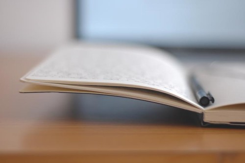 An open notebook with a pen resting in the spine