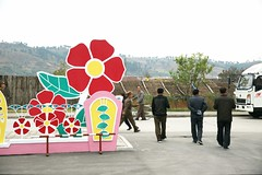 Flowers in Wonsan
