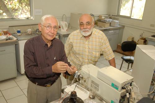 Web de Química sobre líquidos iónicos