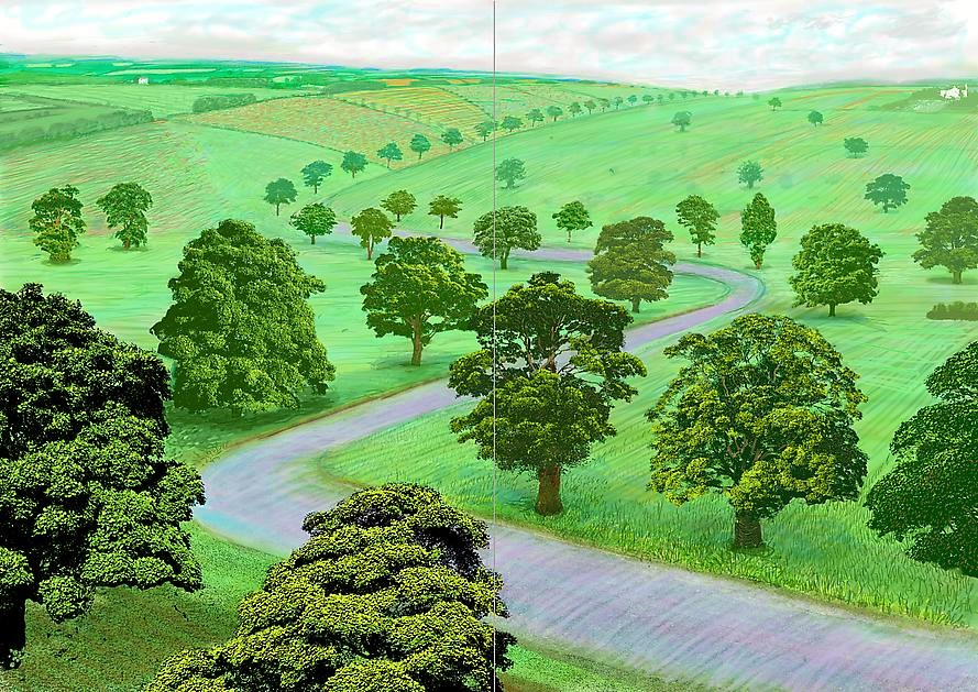 A Bigger Green Valley, 2008, Inkjet printed computer drawing on two sheets of paper, 154.31 x 217.17 cm