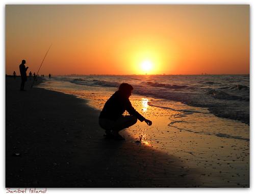 shells beach sunrise florida sanibelisland