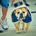 Drake Relays--18 by shane422
