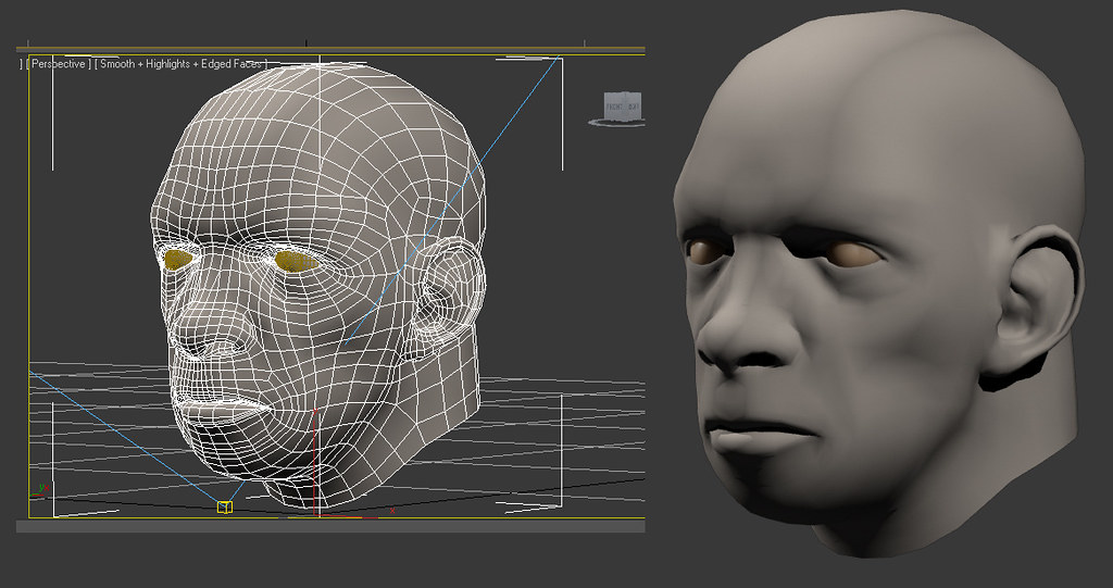 wireframe head