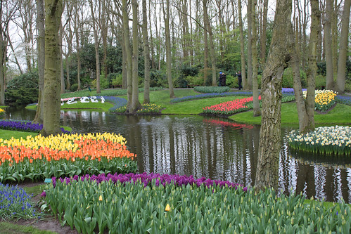 Keukenhof (Garden of Europe)