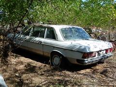 automobile, vehicle, antique car, sedan, land vehicle, luxury vehicle,