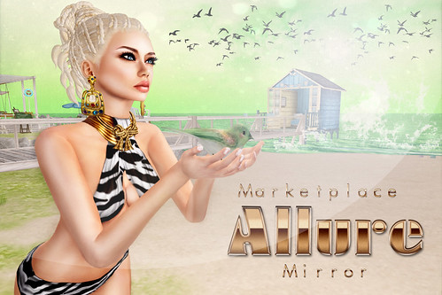 Flyer to Allure Mirror