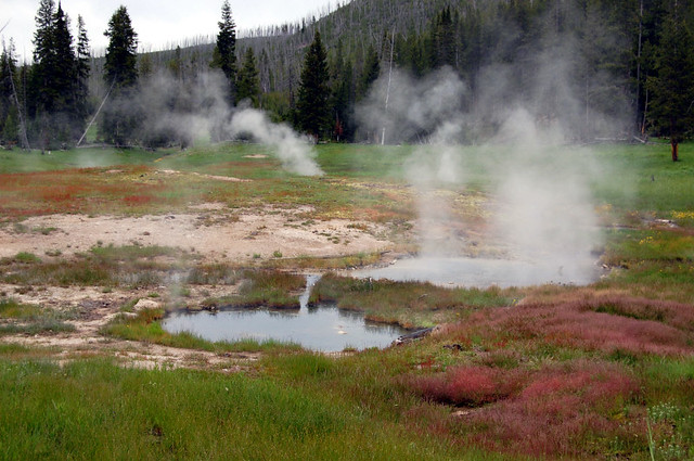 hot springs yellowstone