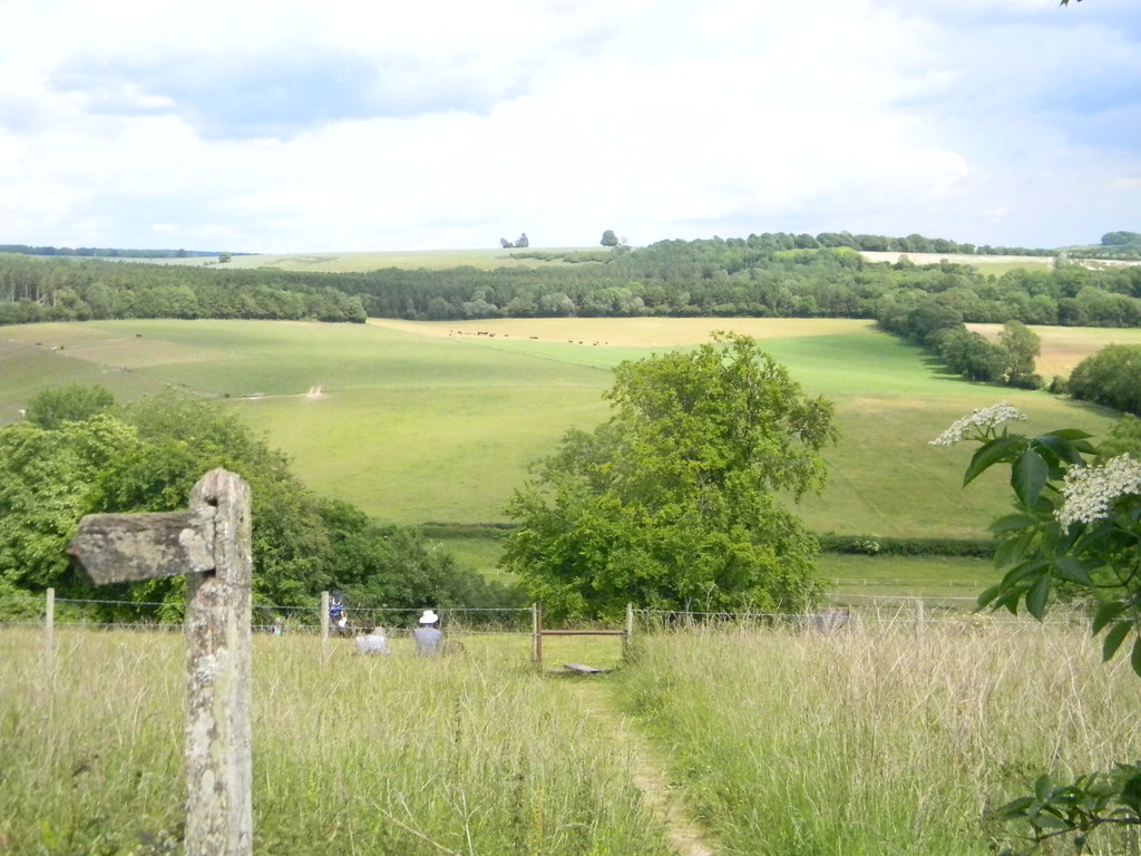 View from the top Petersfield to Rowlands Castle