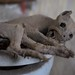 portrait of a mummified housecat by TZM Photo