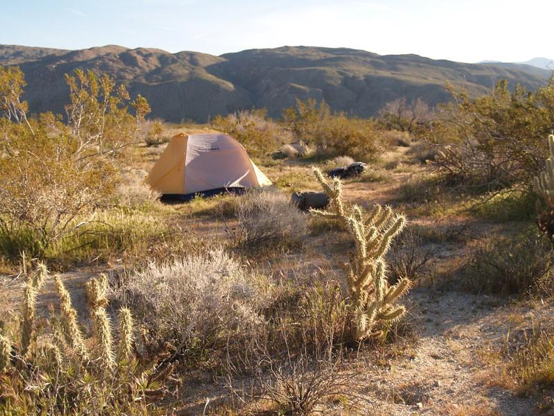 Collins Valley campsite