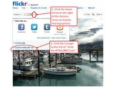 Updated! How to Embed a Flickr Photo: Part 1