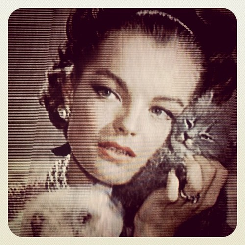 Romy Schneider Angry With Kittens