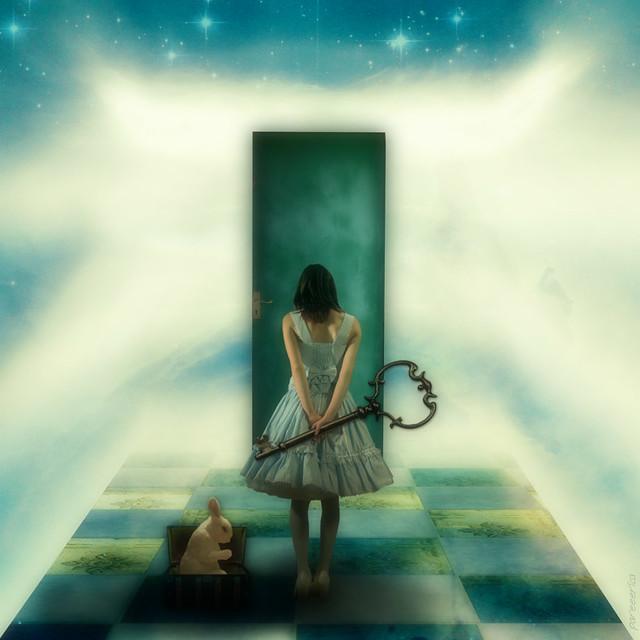 * Dreams of Alice *, Sony DSC-F88