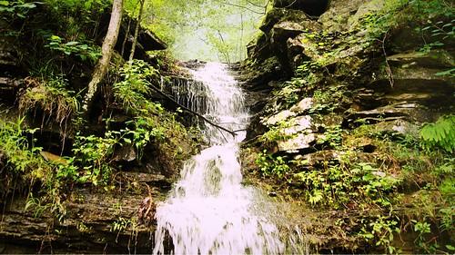 park tree green nature walking waterfall state hiking path sony devils den scenic a33 trail devil arkansas sonya33