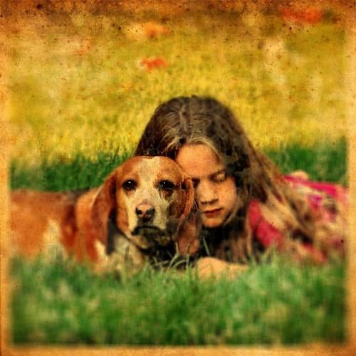 dog beagle iphone dpscamphoto