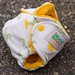Dandelion Newborn Fitted Diaper