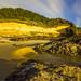 Oregon Gold by Ken Krach Photography