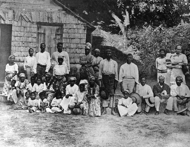 caribbean plantation coloring pages - photo#33