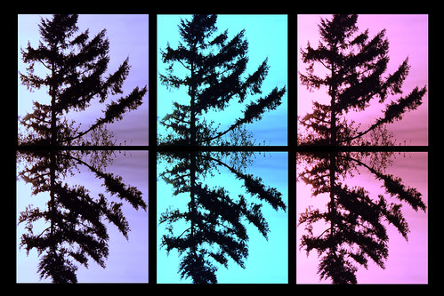 pink blue abstract tree collage purple mosaic evergreen mirrorimage odc1 beginswithe