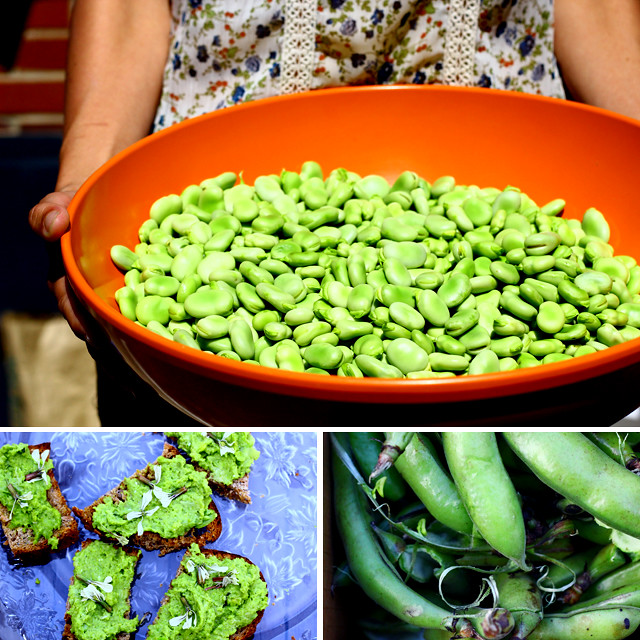 Eat Retreat: Favas