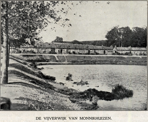 Vijverwijk