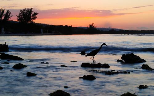 sunset sea beach jamaica