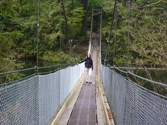 suspension bridge(1.0), canopy walkway(1.0), rope bridge(1.0), bridge(1.0),