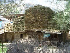 thatching, village, straw, hut, wood, tree, shack, house, rural area,