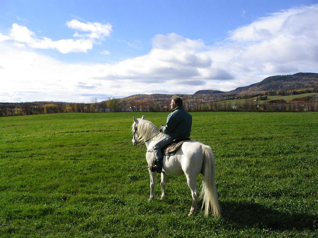 Équitation Panoramique à Charlevoix (Québec, Canada)