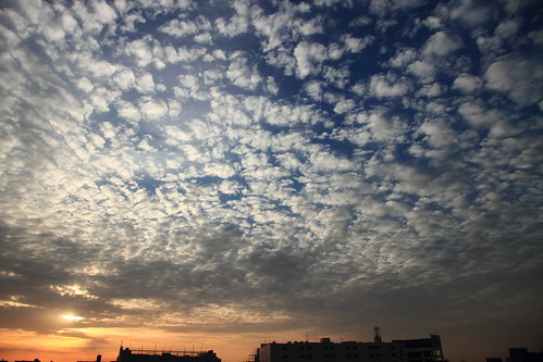 Altocumulus that shines in morning