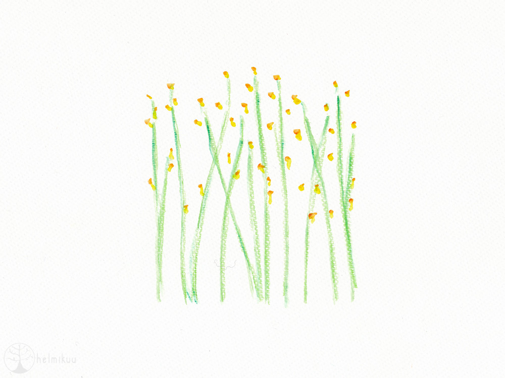 Spring Flowers Watercolor Blogged Mervihelmikuu20 Flickr