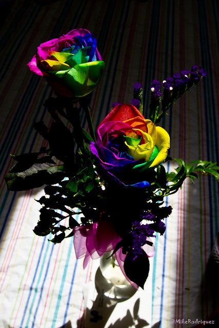 Tie dye roses momday11 1 flickr photo sharing for How to make tie dye roses