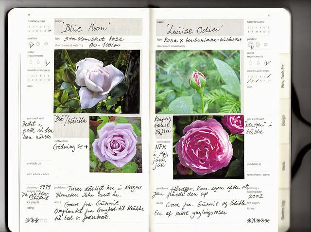 Moleskine Passions Gardening Journal Roses Flickr