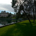 Small photo of Peace on False Creek