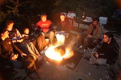 fire, campfire, bonfire,