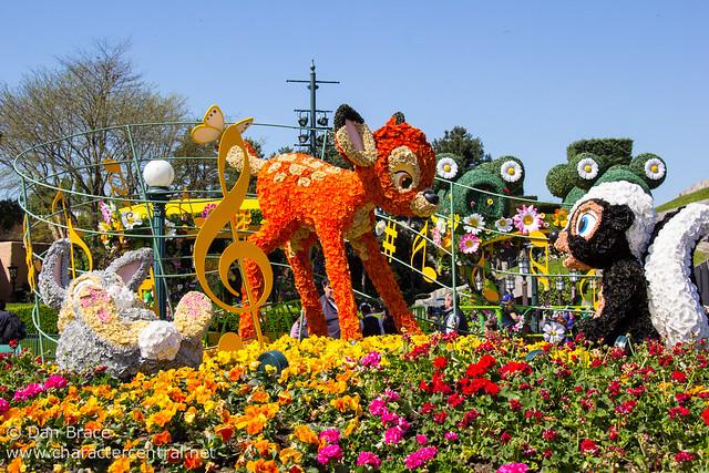 Spring in Central Plaza