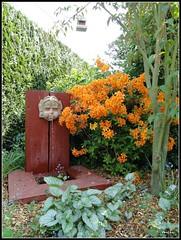 Denaz image - Jardin secret du grand boulay ...