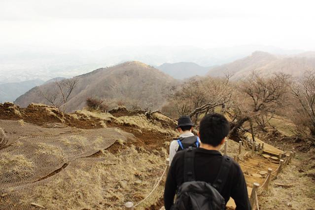 20110429_塔ノ岳(表尾根)_0045
