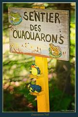 Ouaouarons Trail