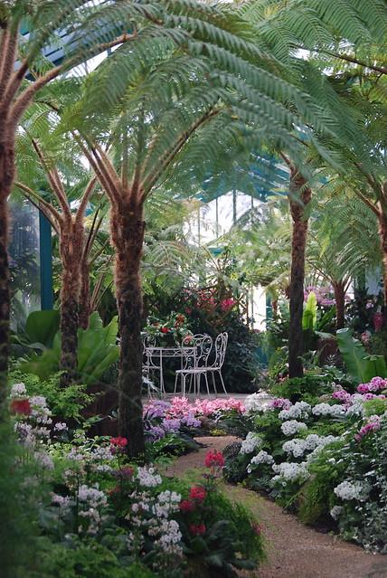 Le petit jardin tropical serres royales de laken for Jardin tropical