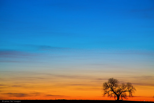 blue trees sunset sky orange tree sunrise colorado colorful openspace prairie plains naturelandscape bouldercounty jamesinsogna