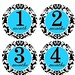 Monthly Milestone Onesie Stickers Damask blue