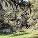 Mepkin Abbey